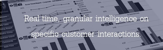 Real time, granular intelligence on specific customer interactions.