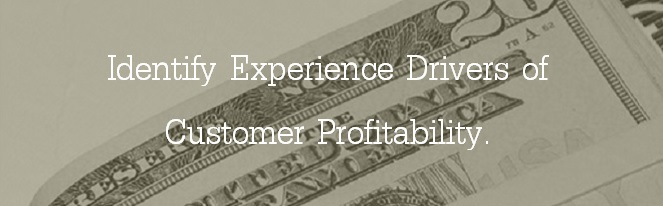 Loyalty/Wallet Share: Identify experience drivers of customer profitability.