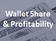 Compare wallet share and customer profitability.