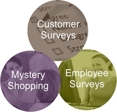 Customer Surveys, Mystery Shoping, and Employee Surveys.
