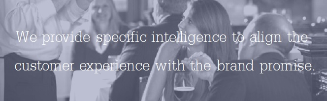 We provide specific intelligence to align the customer experience with the brand promise.